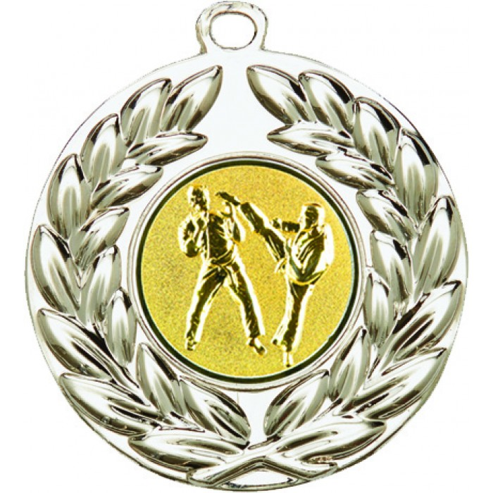 50MM SILVER SPARRING MARTIAL ARTS MEDAL